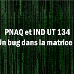 PNAQ et IND UT 134 : Un bug dans la matrice ?